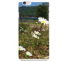 Cape Breton wildflowers iPhone Case/Skin