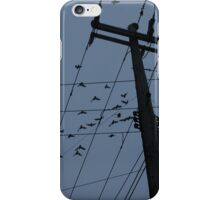 Birds Serenade iPhone Case/Skin
