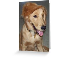 Do You Like My New Hair Style? Greeting Card