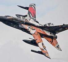 German Tiger NATO Tornado by Z3roCool