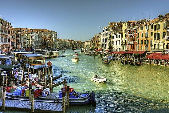 Life in Venice by Tom Gomez