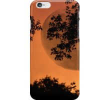 Orange Evening - JUSTART ©  iPhone Case/Skin
