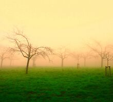 Morning Fog  - JUSTART ©  by JUSTART