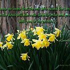 2 Corinthians 4:14 by Kathleen Hamilton