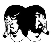 Death From Above 1979 Photographic Print