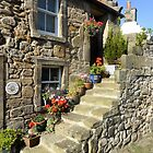 Dream Home Falkland by Francis  McCafferty This is Fife!