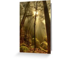 Afternoon mist, Mount Buffalo Greeting Card
