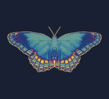 Colorful Butterfly Kids Clothes