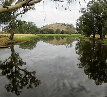 Billabong near Gundagai, NSW, Australia. by kaysharp