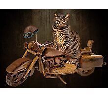 PURRING AND POSING - LONGING TO TAKE A RIDE-FELINE & MOTORCYCLE PICTURE Photographic Print