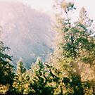 Yosemite  by Santamariaa