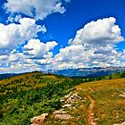 """Hiking Shrine Ridge Trail"" Vail, Clorado USA by AlexandraZloto"
