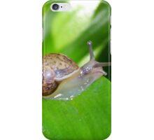 Slithery Snail iPhone Case/Skin
