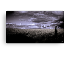 A Storm is Brewing Canvas Print
