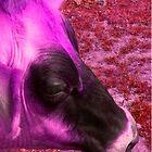 Pink Cow by BevsDigitalArt
