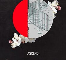Ascend  by Frank  Moth