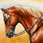 Western Pleasure Horse by csforest