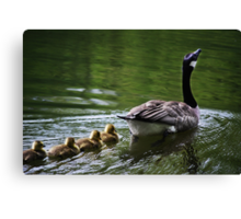 """Full Speed Ahead, Kids!!"" Canvas Print"
