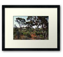 Karlkula Woodland Framed Print