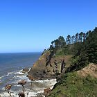 Olympic National Park, landscape picture of sea,cliff and blue sky. by naturematters