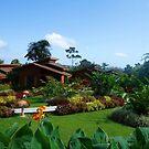 Lovely Costa Rican Resort by hummingbirds