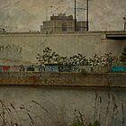 Across The Schuylkill River In Philadelphia - Pennsylvania - USA by MotherNature2