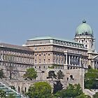 Royal Palace, Budapest, Hungary (Panorama) by Margaret  Hyde