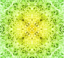 """Spirit of India: Fleur-Web"" in grass green and yellow by FireFairy"