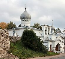 View of Old Pskov by mrivserg