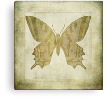 Butterfly Textures Canvas Print