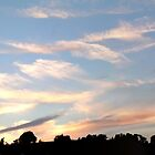Heavenly - Panorama by rose-etiennette
