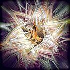 Lily Light by Wib Dawson