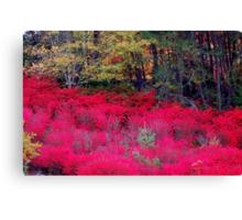North Carolina Beauty Canvas Print