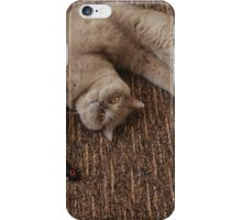 Balls of fur iPhone Case/Skin