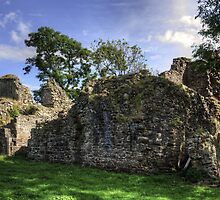 Pendragon Castle Ruin by Tom Gomez