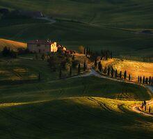 Golden fields of Toskany by JBlaminsky