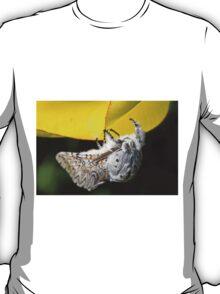 Furry Puss Moth on yellow Tulip T-Shirt