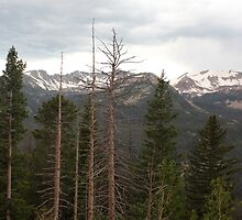 Rocky Mountains 3 by marybedy