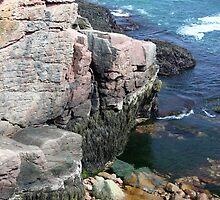 Acadia Shoreline 21 by marybedy