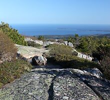 Cadillac Mountain Acadia by marybedy