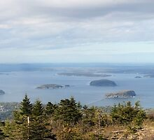 Cadillac Mountain Panorama 1 by marybedy