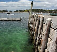 Seal Harbor Dock by marybedy