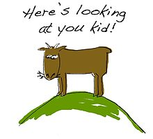 here's looking at you kid by Sandy Mitchell