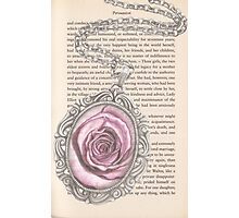 Silver & Rose Photographic Print