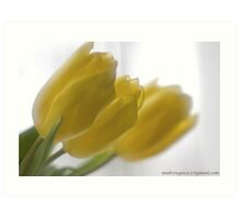 ❤❤❤ Frasi Belle Sulla Vita . Mellow yellow. Be sure to wear flowers in your hair! Featured in Tulips. Art Print