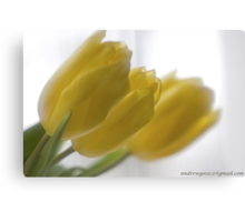 ❤❤❤ Frasi Belle Sulla Vita . Mellow yellow. Be sure to wear flowers in your hair! Featured in Tulips. Canvas Print