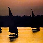 Ancient feluccias silhouetted on the Nile by indiafrank