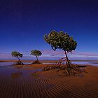 Moonlight Mangroves - Yule Point FNQ by Mark Shean