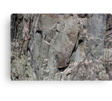 Black Canyon of the Gunnison Wall 4 Canvas Print