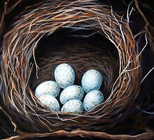 Bird Nest with eggs realistic still life nature art by LindaAppleArt